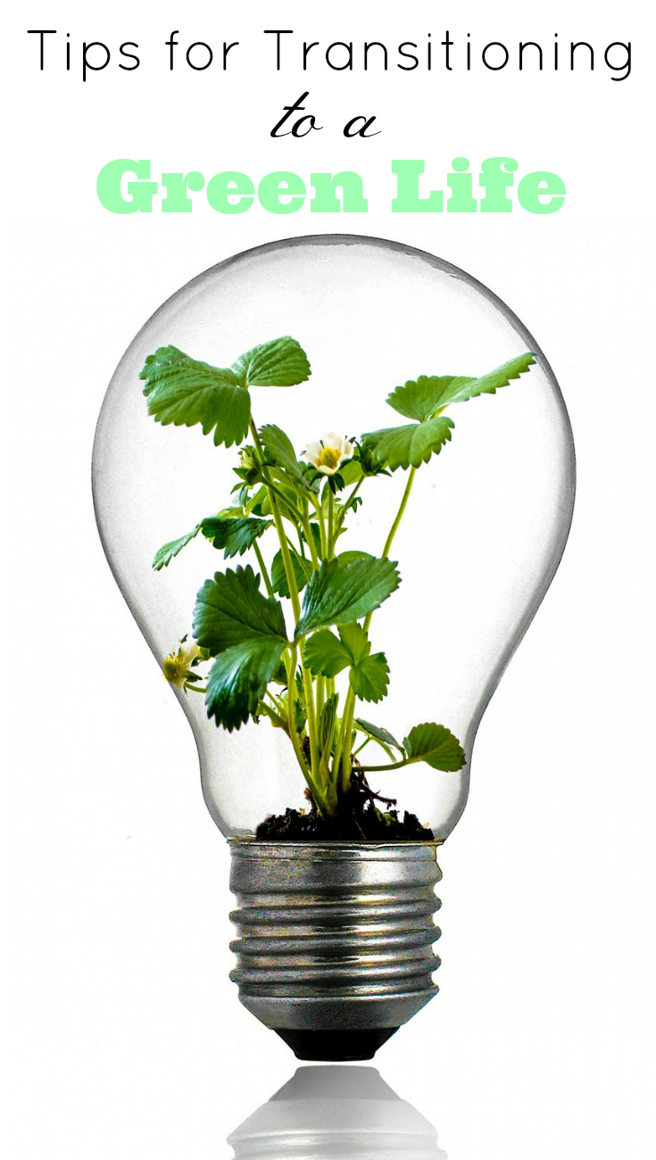 Tips for Transitioning to a Green Life, Eco-friendly Tips