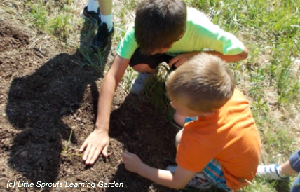Little Sprouts Learning Garden