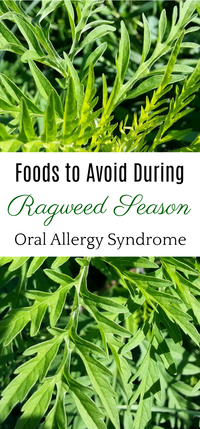 9 Foods to Avoid During Ragweed Season, Oral Allergy Syndrome, Natural Health