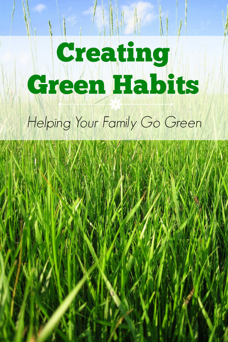 Wanting to be more eco-friendly? These tips will help you create green living habits.