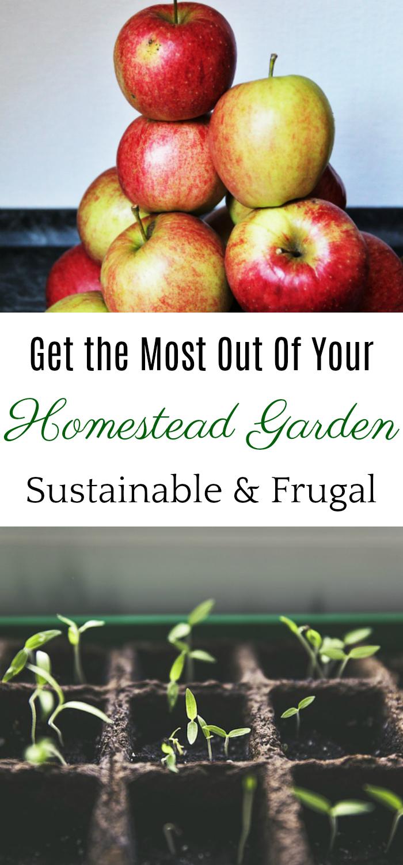 homestead garden, sustainable gardening, eat local, homesteading