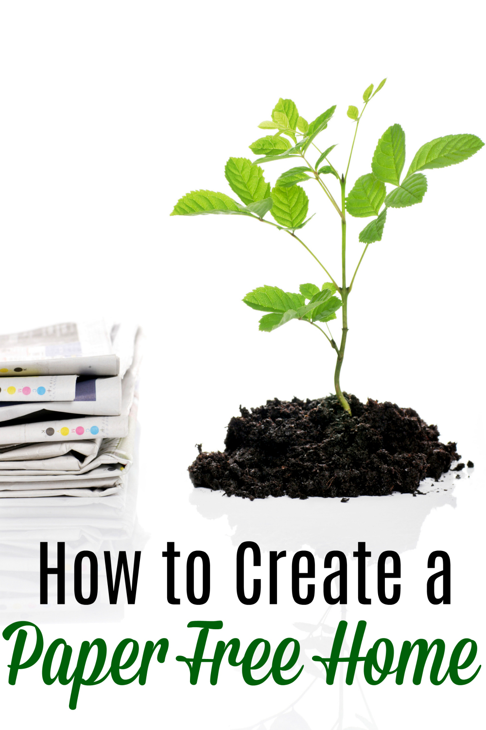 pile of paper and small tree in dirt