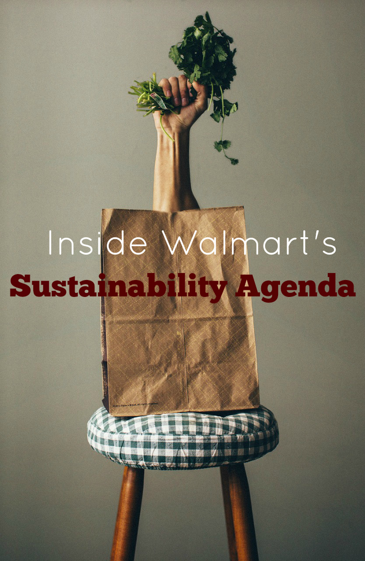 Inside Walmart's Sustainability Agenda