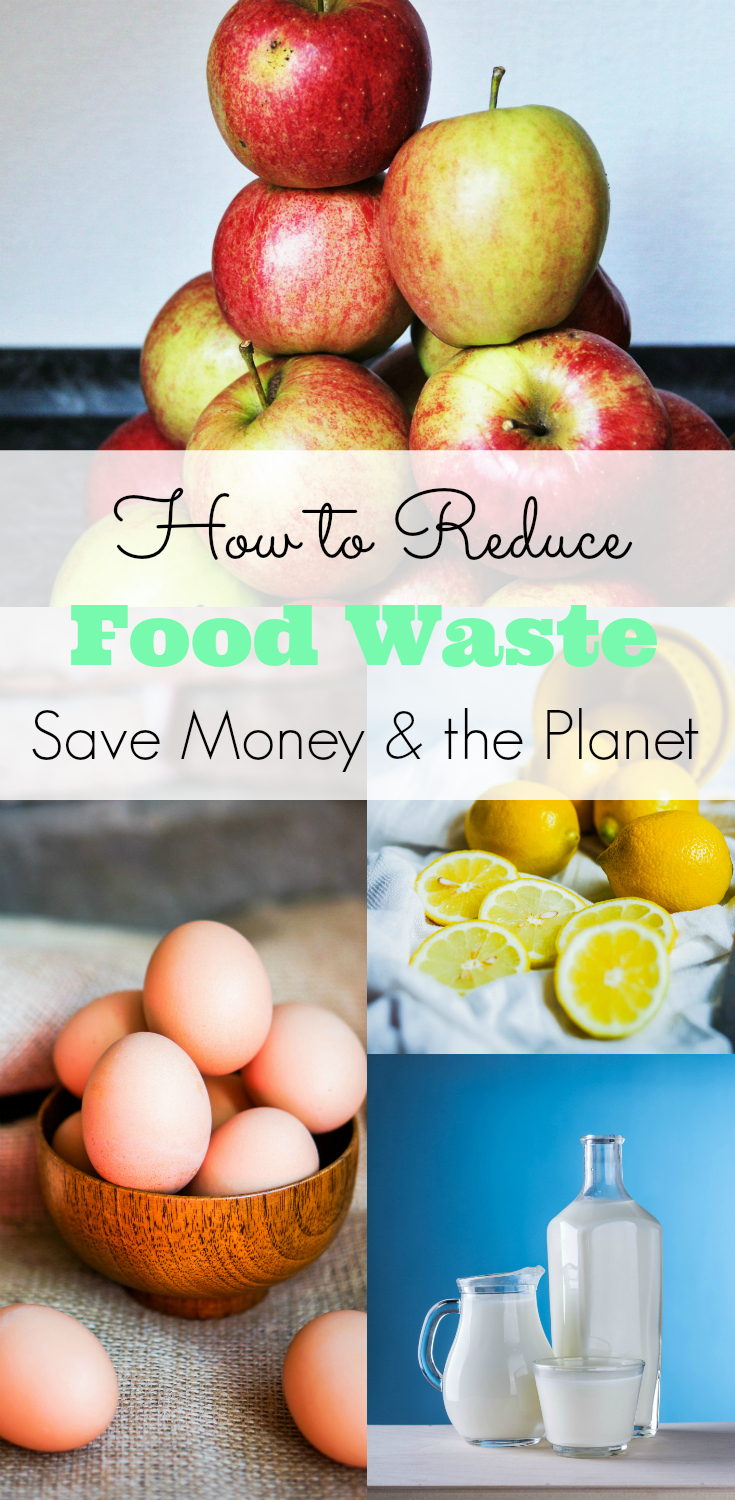 Reduce food waste, save money, go green