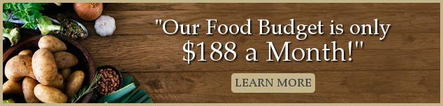 """our food budget is only $188 a month"" banner"