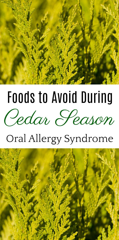 6 Foods to Avoid During Cedar Season, Oral Allergy Syndrome, Natural Health, Cedar Fever #allergies #oralallergysyndrome #naturalhealth