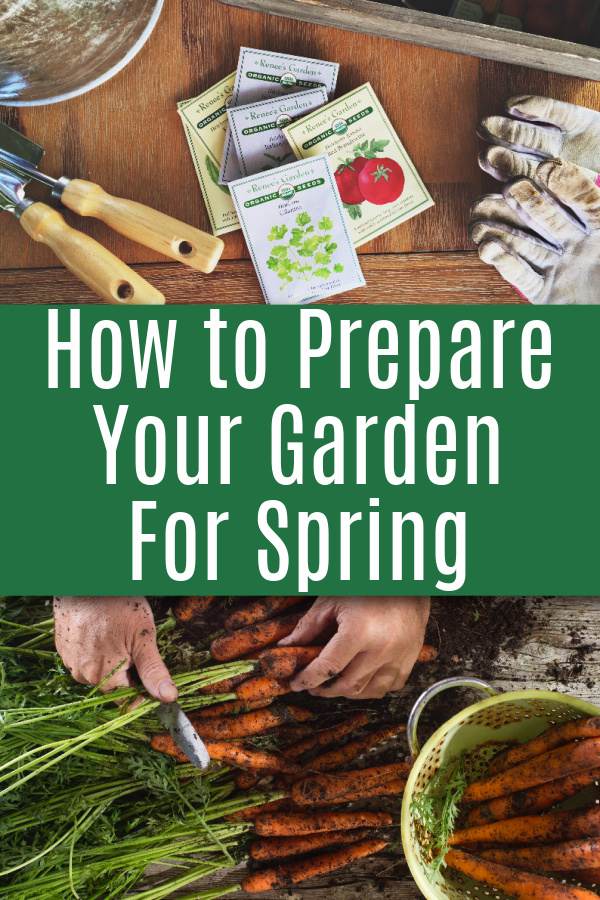 gardening supplies and carrots with text that reads how to prepare your garden for spring