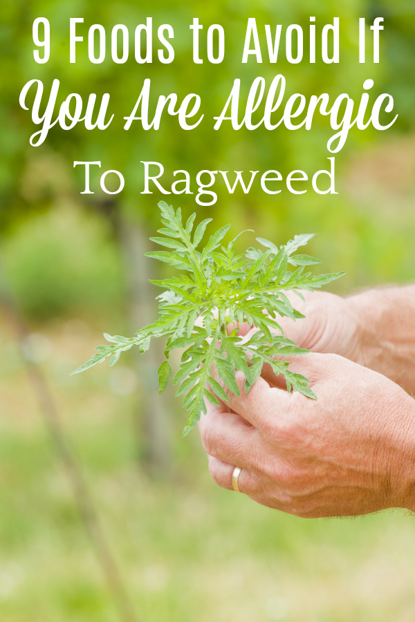 person holding ragweed