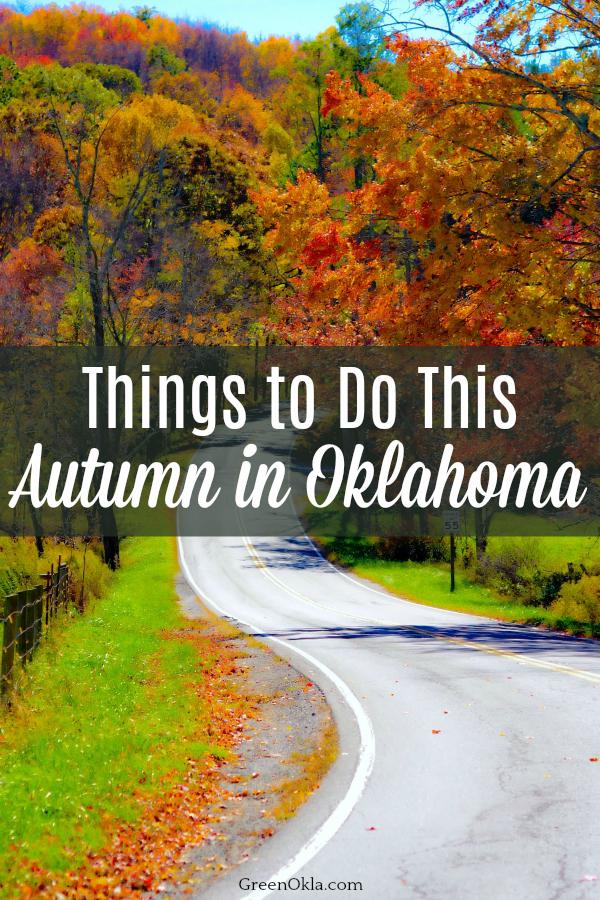 Beautiful fall foliage along road