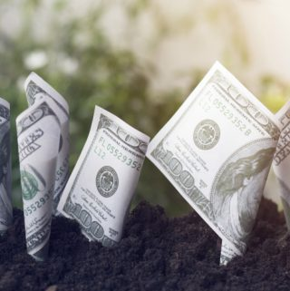 Dollars bill growth up with soil planting money