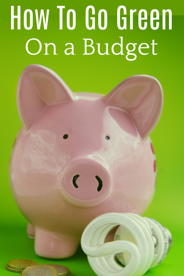 pink piggy bank with CFL light bulb and change in front of green background