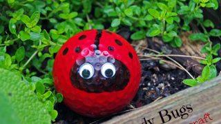 Golf Ball Ladybug Craft