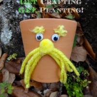 The Lorax Flower Pot