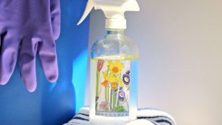 DIY All-Natural All Purpose Cleaner