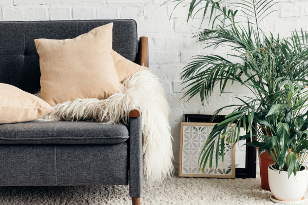 white living room with sofa and plant