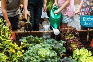 group of kids working in garden