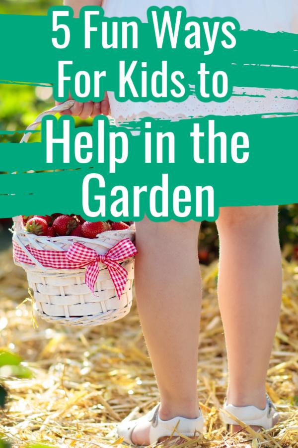 kid holding basket of strawberries in garden