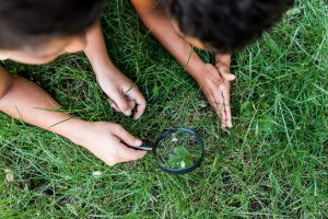 How to Teach Kids About the Environment