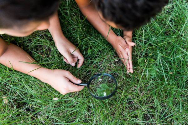 kids holding magnify glass looking at grass